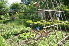 Schulgarten der HBG